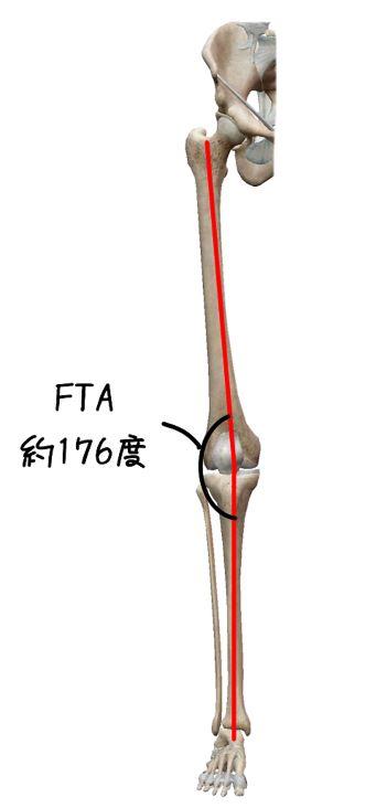 FTAのイラスト