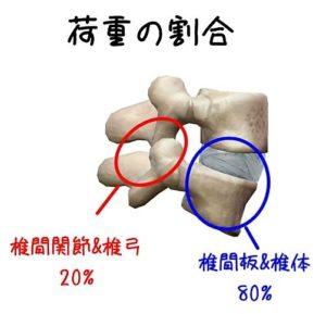 腰椎への荷重割合のイラスト