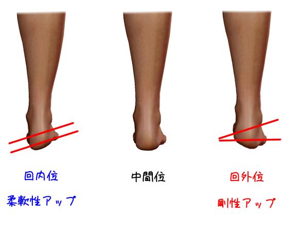 距骨下関節とショパール関節の関係を表したイラスト