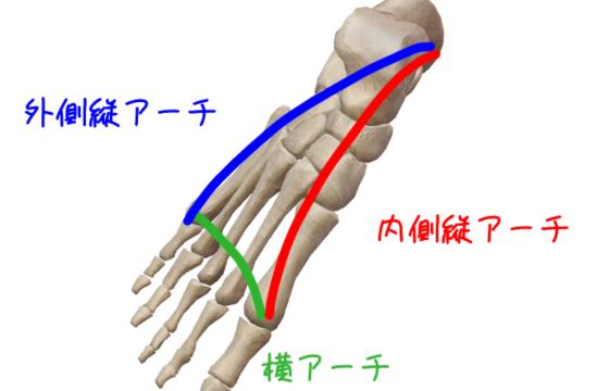 足部アーチ