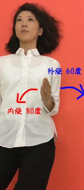 1stポジションでの肩関節の内旋外旋可動域のイラスト