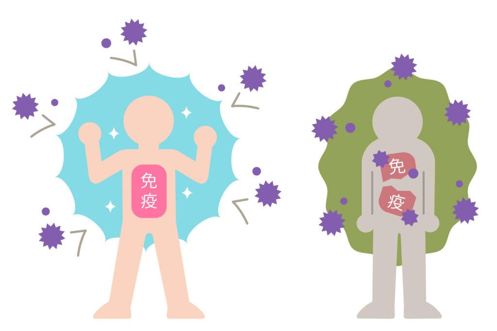 免疫力アップのイメージイラスト