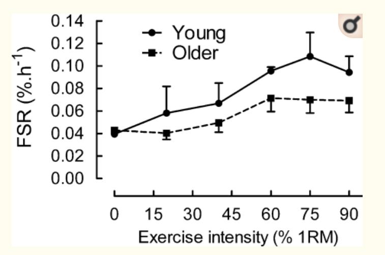 若年者と高齢者の効果的なトレーニング強度のグラフ